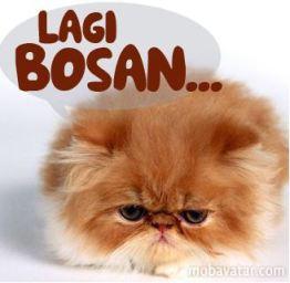 Lagi Bosan