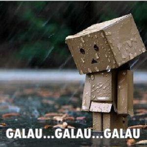 Galau Danbo